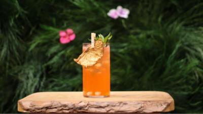 Cocktails maken? Dit zijn de 10 lekkerste