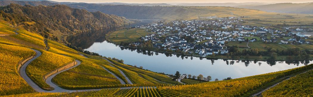 Moezel wijngebied Duitse zoete wijnen